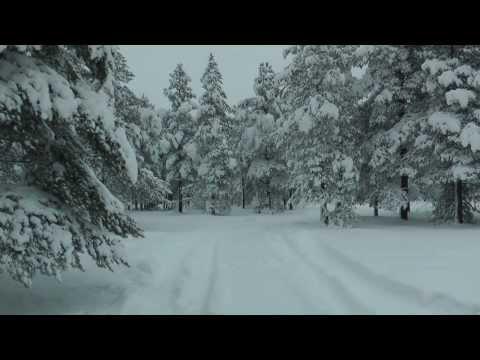 особенности дикого зимнего караванинга/ winter caravaning : Kola peninsula