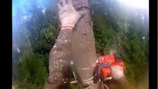 Удаление аварийного дерева.(Профессиональный уход за деревьями. Лечение, обработка от вредителей и болезней,обрезка и удаление деревье..., 2012-09-02T21:27:56.000Z)