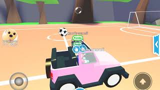 We was playing with Roblox with me,camila,faviola