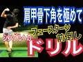 ゴルフ前倒しフェースターン!肩甲骨を極める左手打ちドリル【Fujun】WGSLレッスンgolfドライバードラコンアイアンアプローチパター