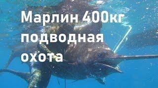 Самый большой Марлин в мире 400кг.  Подводная охота на марлина. Владимир Середа