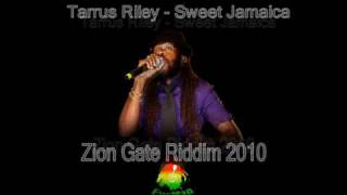 Zion Gate Riddim 2010 - EyeMan Mix