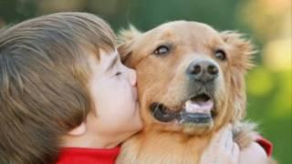 Человек собаке друг!