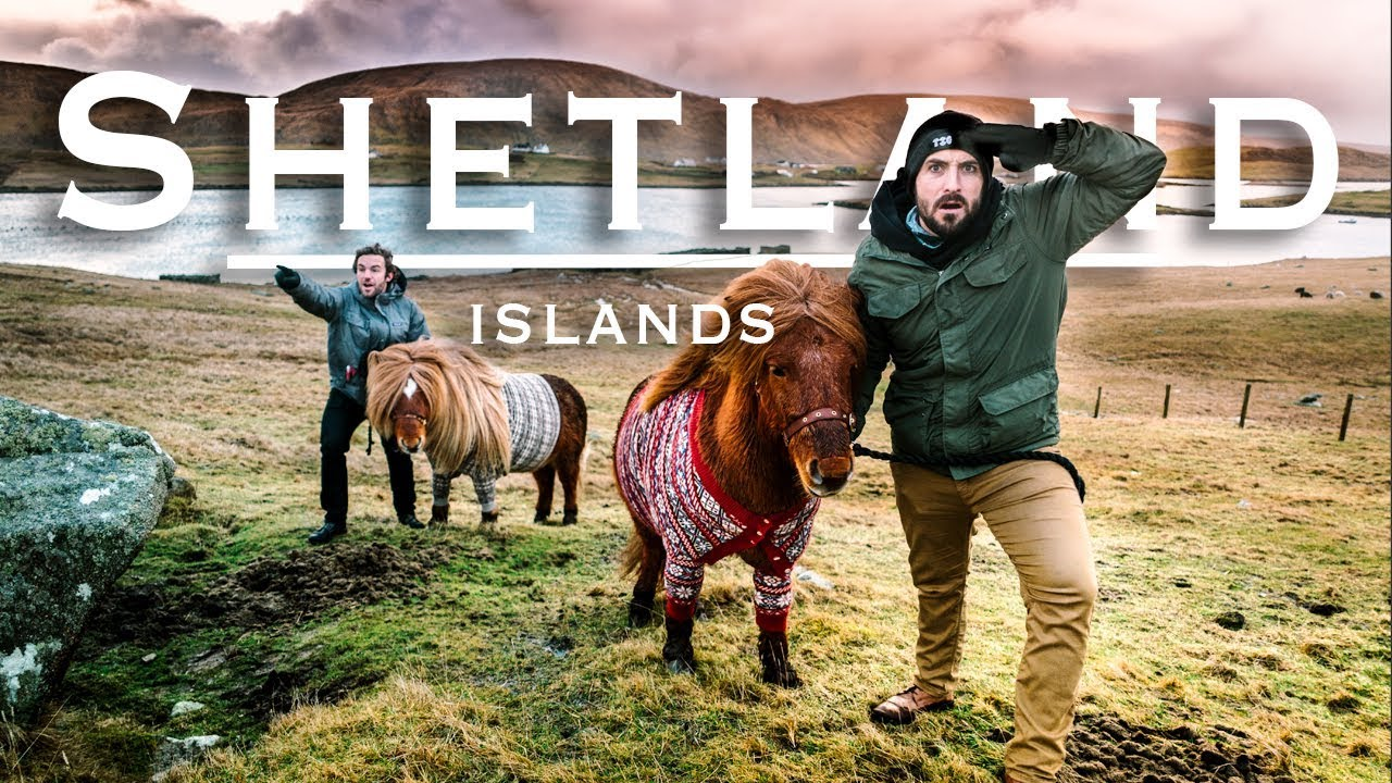 shetland english edition
