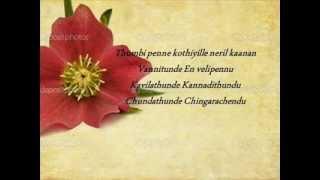 Thumbi Penne Lyrics - Bangalore Days