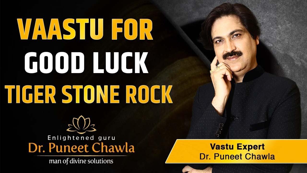 How To Bring Good Luck how to bring good luck & enhance confidence? vaastu remedy/ tiger