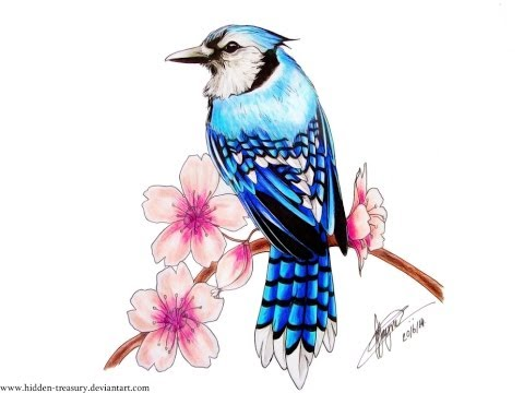 BlueJay Cherry Blossom Tattoo Speed Drawing