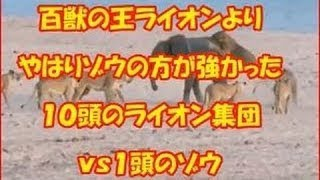 ビデオで使用されるサウンド :Beeper Emergency Call:YouTube music lib...