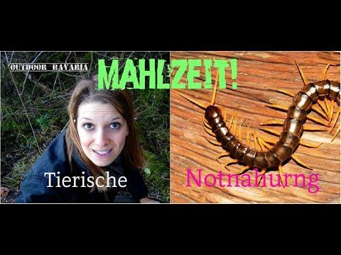Tierische Notnahrung - Vanessa Blank - Outdoor Bavaria - Bushcraft & Survival