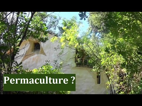 permaculture youtube