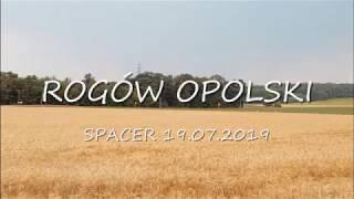 Rogw Opolski Spacer 17.07.2019 zdjcia