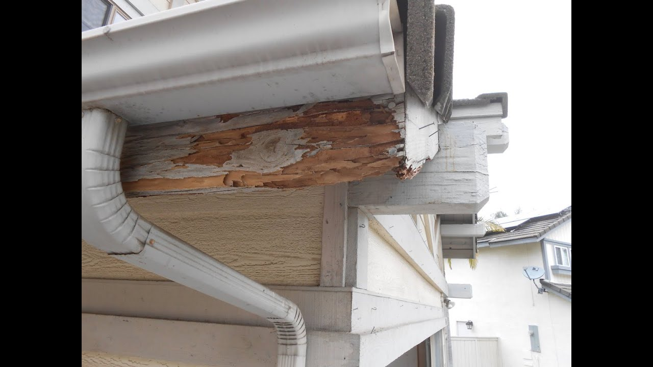 Termite Repair On Fascia Board Youtube