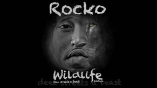 Rocko WildLife New 2010