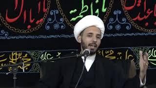 الشيخ أحمد سلمان - طريقة تعامل معاوية مع الإمام الحسن المجتبى عليه السلام بعد الصلح