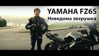 Yamaha FZ6S. Неведома зверушка