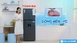 Tủ lạnh Toshiba 311L: ngăn đông mềm -1 độ C trữ thịt cá tươi lâu (GR-RT395WE-PMV) • Điện máy XANH