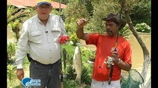 Pescaria Especial para a Família na Pousada e Pesque-e-Pague Rincão Alegre