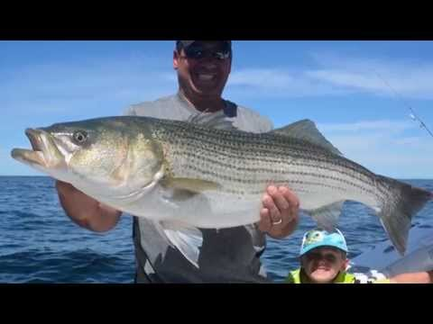 2013: The Best of Cape Cod Fishing with Reel Deal (Inshore)