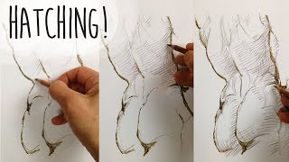 HATCHING TUTORIAL - H๐w to use parallel, contour and cross hatching for shading and form