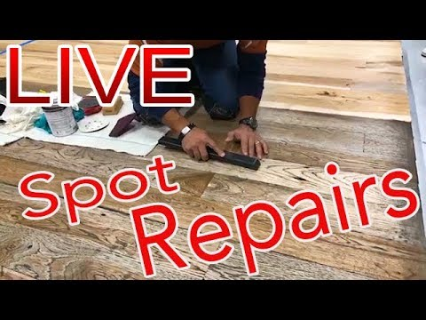 Spot Repairs Live On Wood Floors By