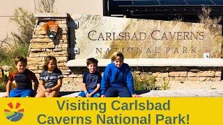 Visiting Carlsbad Caverns National Park!