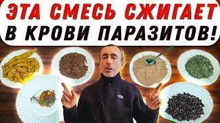 постер к видео ЭТА СМЕСЬ СЖИГАЕТ В КРОВИ ПАРАЗИТОВ, ИДЕТ К ЛЮБОМУ БЛЮДУ! Зеленый чай, гранат, куркума, зира, перец.