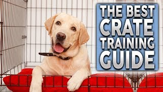 The ULTIMATE Crate Training Guide For Your New Dog or Puppy!