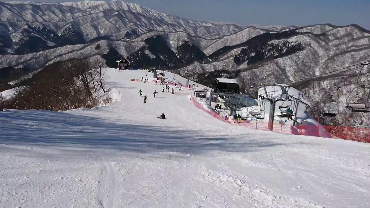 積雪 奥 場 伊吹 スキー