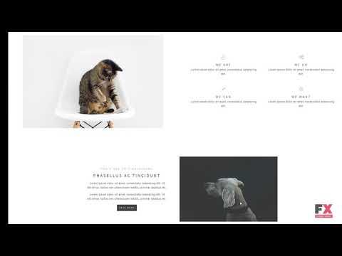 Igaa - Animal Activism WordPress Theme TMT | Free Template  Micky Wes
