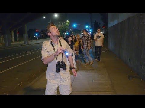 Ellen's Writer Tricks Tourists on a Los Angeles Wildlife Safari Tour