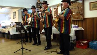 Skiffle Brothers - The Gold Rush Is Over