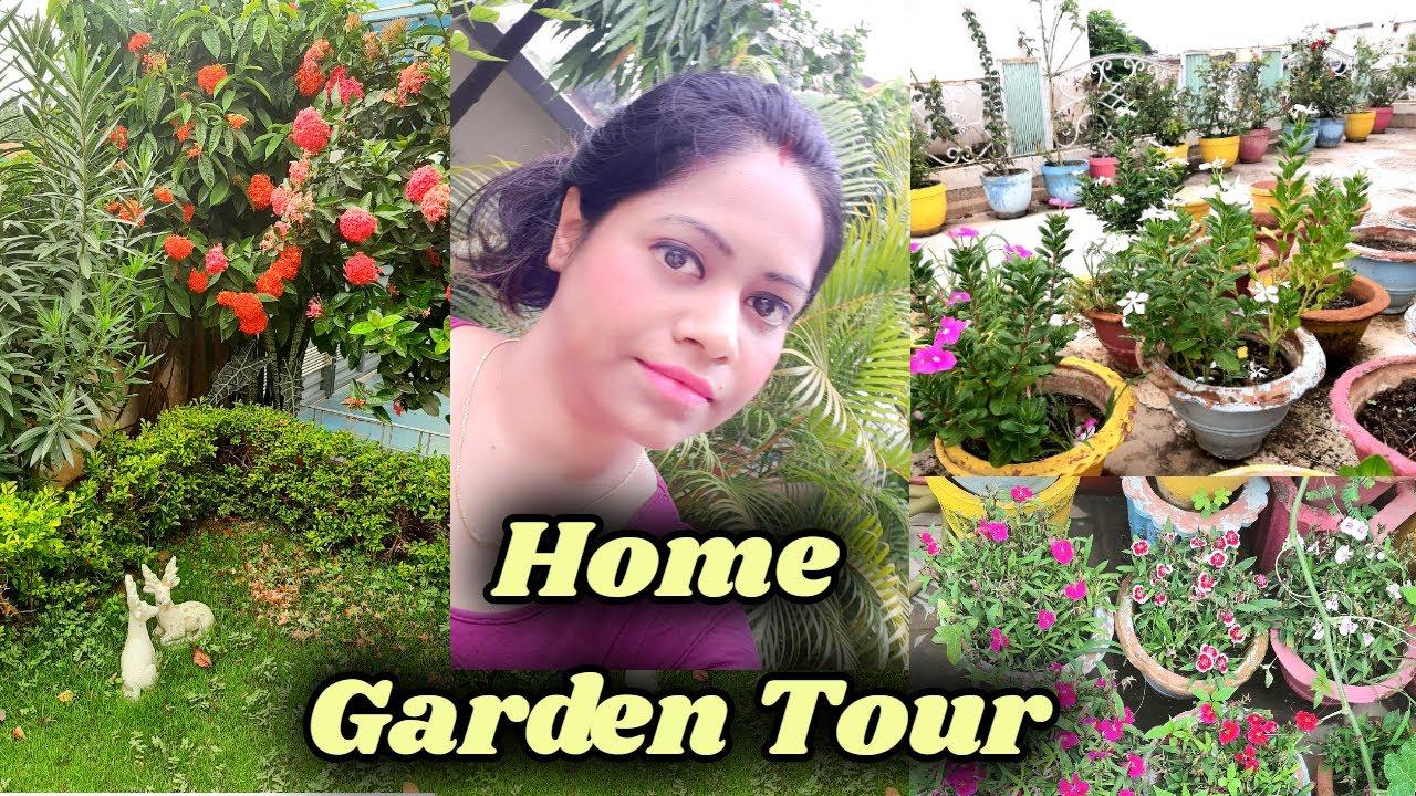 Home Garden Tour | Sasumaa ka Garden and Plants in Bilaspur | Sasural Vlog | Hindi Home Vlog