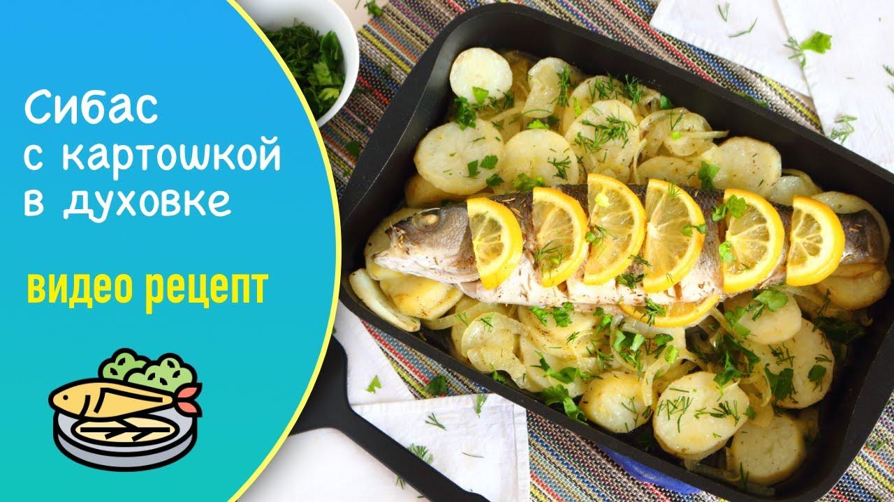 Сибас с картошкой в духовке — видео рецепт