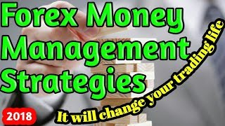 Forex money management strategies: this video will change your trading life. 12.01.2018
