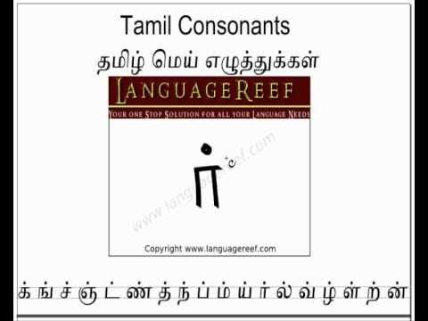 Learn Tamil - Quick Online Learning - All Languages