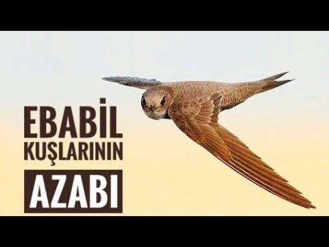 Tarihte  Fil Vakası , Fil Olayı,  Ebabil Kuşları