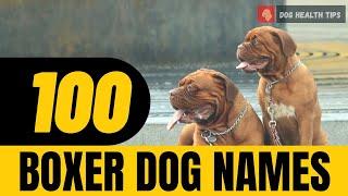 Top 100 Most Popular Boxer Dog Names of 2021 !  Unique  Puppy Names