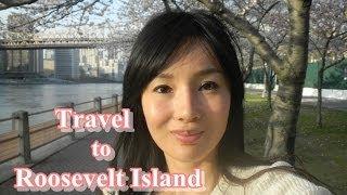 Travel to Roosevelt Island/ ルーズベルト島の桜