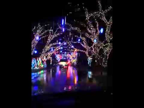 - Best Christmas Lights Display In Florida - YouTube