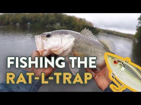 Rat-L-Trap Fishing Tips | How To Fish Lipless Crankbaits  (Ft. Brian Lattimer)
