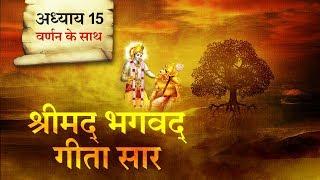 श्रीमद भगवत गीता सार- अध्याय 15 |Shrimad Bhagawad Geeta With Narration |Chapter 15|Shailendra Bharti