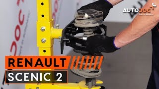 How to replace Top mount RENAULT SCÉNIC II (JM0/1_) Tutorial