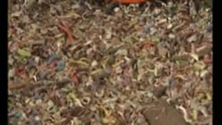 recykling odpadów wielomateriałowych na maszynie BANO EasyLine
