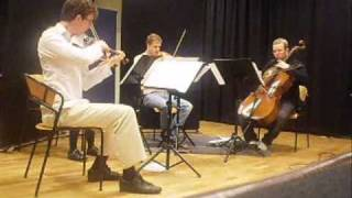 Through the Fire and Flames: String Quartet Version