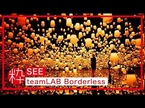 Mori Building DIGITAL ART MUSUEM: teamLAB Borderless