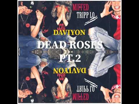 Dead Roses PT.2