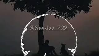 Sessizz 222