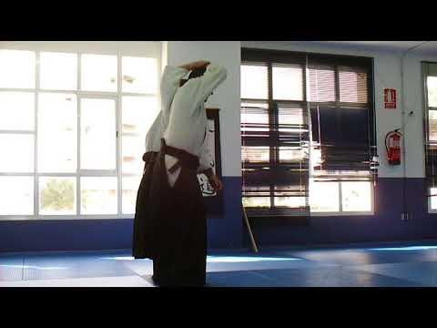 César Febles 6º Dan Aikido - Progresión Básica 1/3 - Grado 6º Kyu