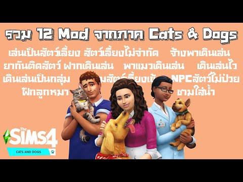 รวม 12 Mods น่าสนใจภาค Cats & Dogs • The Sims 4 Cats & Dogs
