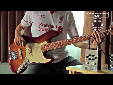Sound Comparison for EBS Microbass II and Aguilar Tone Hammer